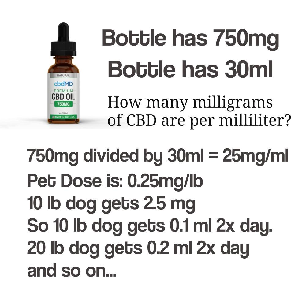 dosing cbd dogs